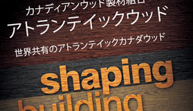 Shaping - Building